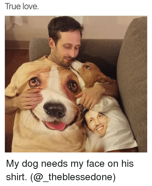 love my dogs: True love. My dog needs my face on his shirt. (@_theblessedone)