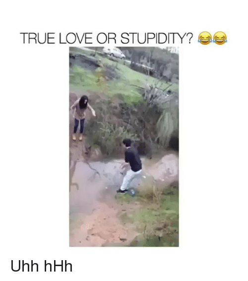 Love, Memes, and True: TRUE LOVE OR STUPIDITY? Uhh hHh