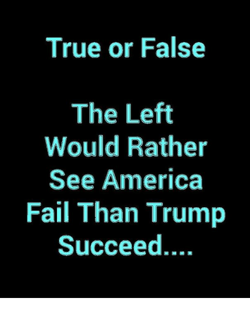 true or false: True or False  The Left  Would Rather  See America  Fail Than Trump  Succeed....