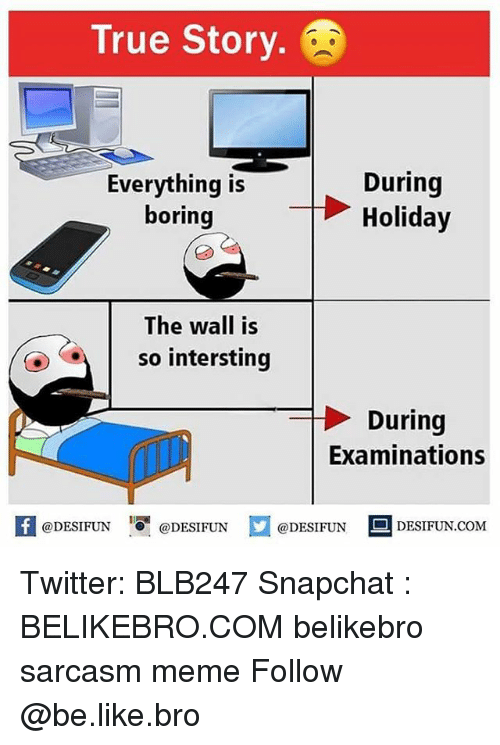 like: True Story.  During  Everything isHoliday  boring  The wall is  so intersting  During  Examinations  K @DESIFUN 증@DESIFUN  @DESIFUN DESIFUN.COM Twitter: BLB247 Snapchat : BELIKEBRO.COM belikebro sarcasm meme Follow @be.like.bro