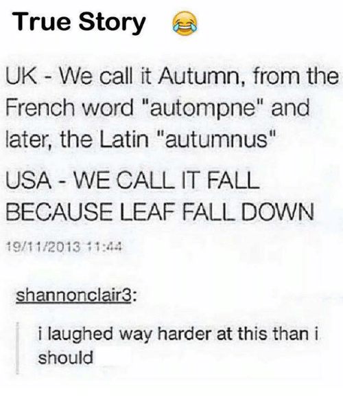 """Its Fall: True Story  UK - We call it Autumn, from the  French word """"autompne"""" and  later, the Latin """"autumnus""""  USA WE CALL IT FALL  BECAUSE LEAF FALL DOWN  19/11/2013144  shannonclair3:  i laughed way harder at this than i  should"""