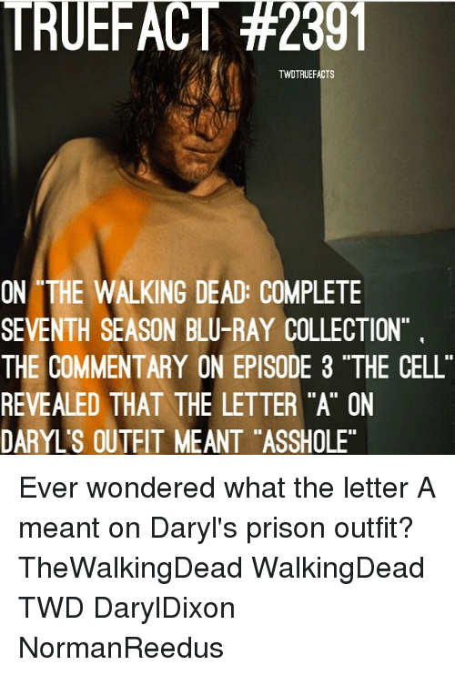 "Memes, The Walking Dead, and Prison: TRUEFACT #2301  TWDTRUEFACTS  ON THE WALKING DEAD: COMPLETE  SEVENTH SEASON BLU-RAY COLLECTION  THE COMMENTARY ON EPISODE 3 ""THE CELL  REVEALED THAT THE LETTER ""A"" ON  DARYL'S OUTEIT MEANT ""ASSHOLE Ever wondered what the letter A meant on Daryl's prison outfit? TheWalkingDead WalkingDead TWD DarylDixon NormanReedus"