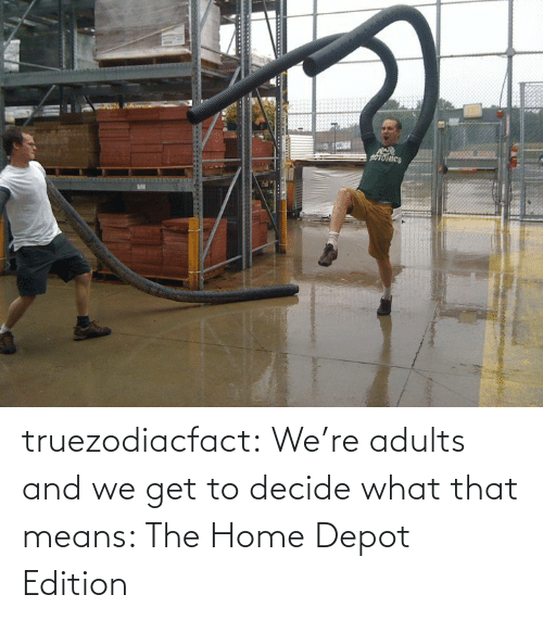 Depot: truezodiacfact:  We're adults and we get to decide what that means: The Home Depot Edition