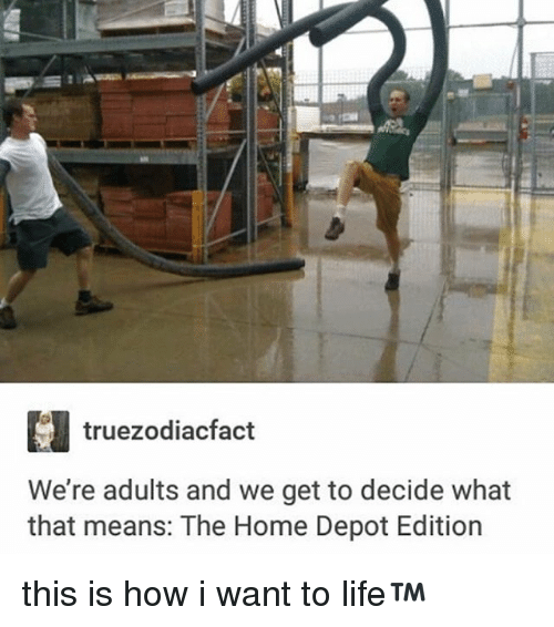 Memes, Home, and Home Depot: truezodiacfact  We're adults and we get to decide what  that means: The Home Depot Edition this is how i want to life™