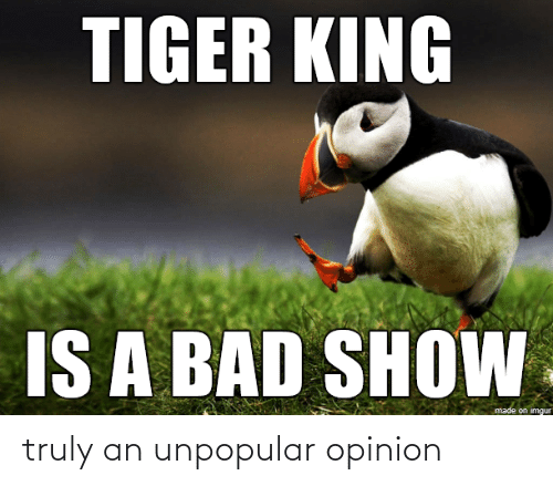 opinion: truly an unpopular opinion