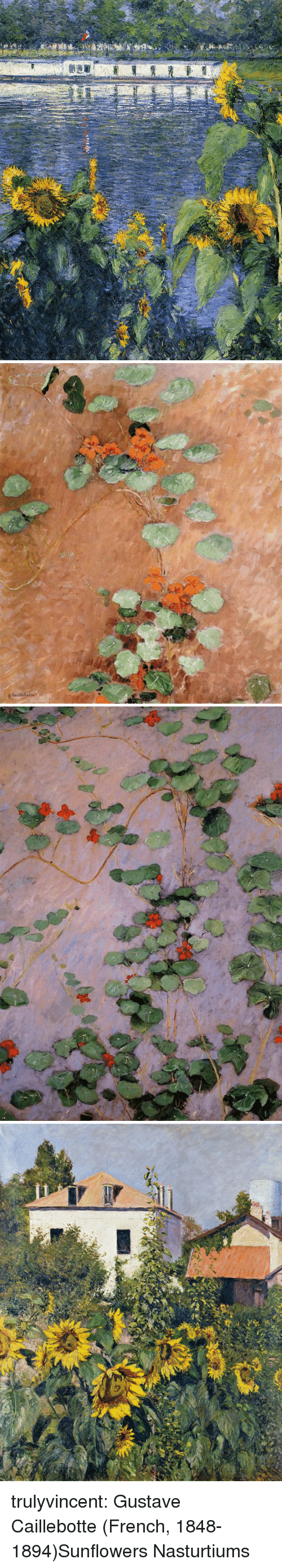 Sunflowers: trulyvincent: Gustave Caillebotte (French, 1848-1894)Sunflowers  Nasturtiums