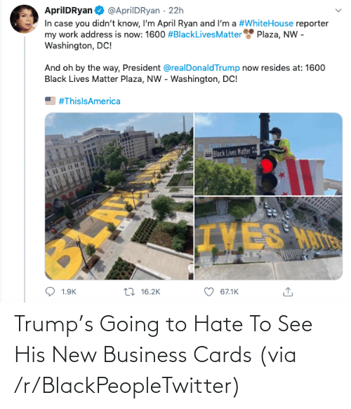 Trump: Trump's Going to Hate To See His New Business Cards (via /r/BlackPeopleTwitter)