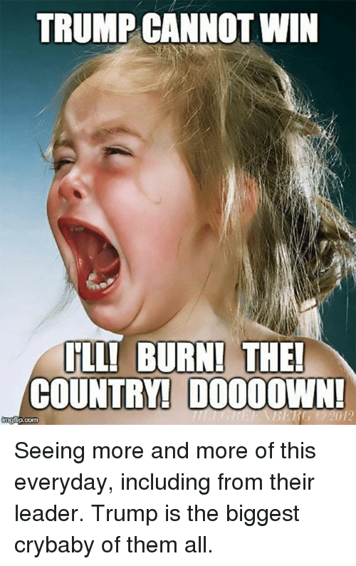 Memes, Trump, and 🤖: TRUMP CANNOT WIN  ILL! BURN! THE!  COUNTRY! DOOOOWN!  mgflip.com Seeing more and more of this everyday, including from their leader. Trump is the biggest crybaby of them all.