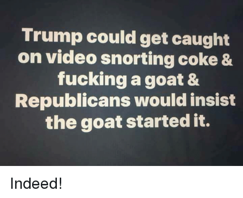 Goating: Trump could get caught  on video snorting coke &  fucking a goat &  Republicans would insist  the goat started it. Indeed!
