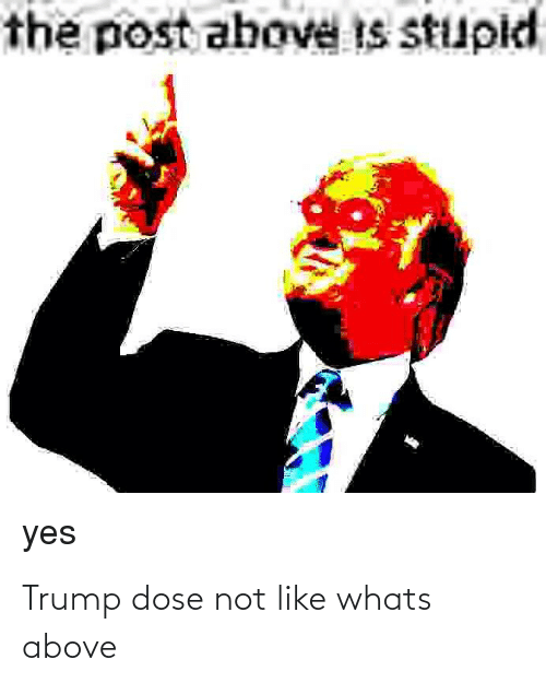 dose: Trump dose not like whats above
