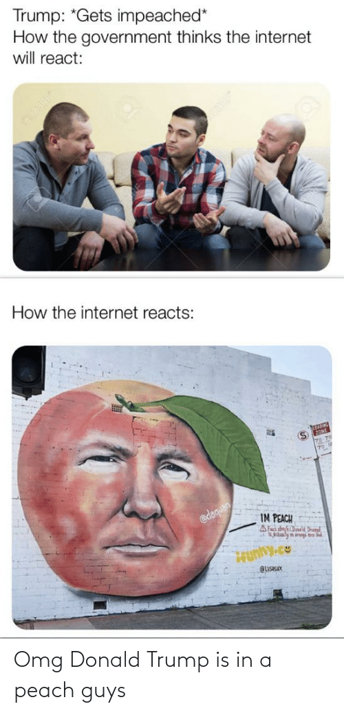 Daquan: Trump: *Gets impeached*  How the government thinks the internet  will react:  How the internet reacts:  @daquan  IM PEACH  AFact chechDineld Drut  Aaaly m dregi nu  QUSISIX Omg Donald Trump is in a peach guys