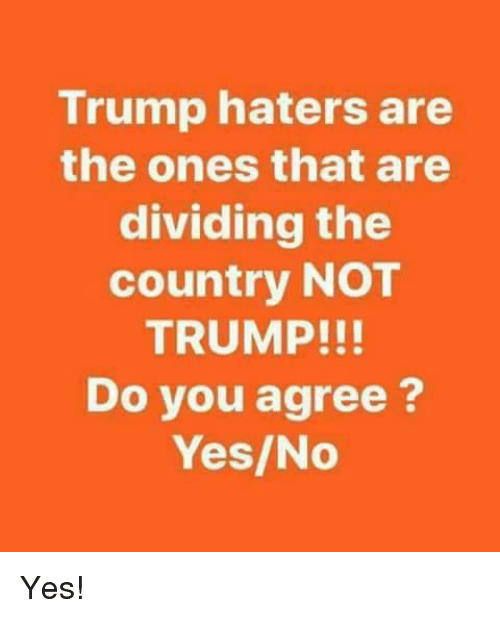 Memes, Trump, and 🤖: Trump haters are  the ones that are  dividing the  country NOT  TRUMP!!!  Do you agree?  Yes/No Yes!
