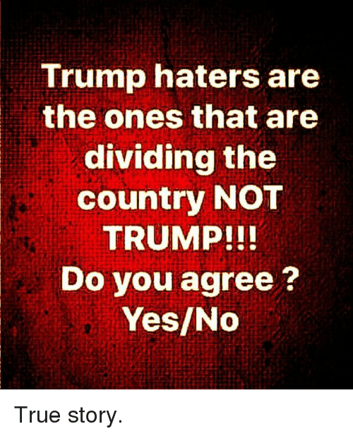 Memes, True, and True Story: Trump haters are  the ones that are  dividing the  country NOT  TRUMP!!  Do you agree?  Yes/No True story.