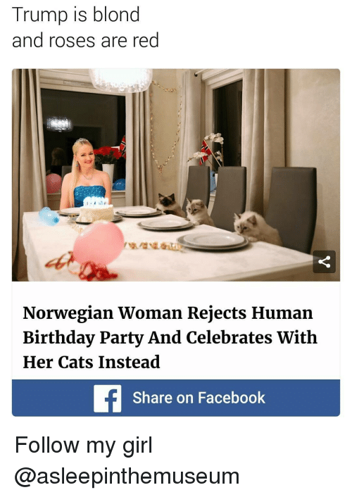 Memes, Norwegian, and Rose: Trump is blond  and roses are red  Norwegian Woman Rejects Human  Birthday Party And Celebrates With  Her Cats Instead  Share on Facebook Follow my girl @asleepinthemuseum