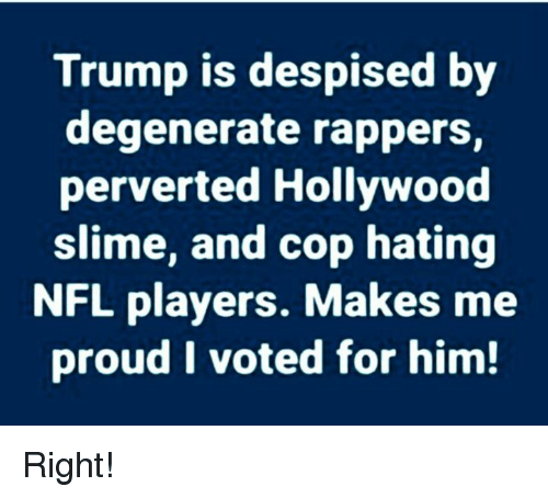 i voted: Trump is despised by  degenerate rappers  perverted Hollywood  slime, and cop hating  NFL players. Makes me  proud I voted for him! Right!