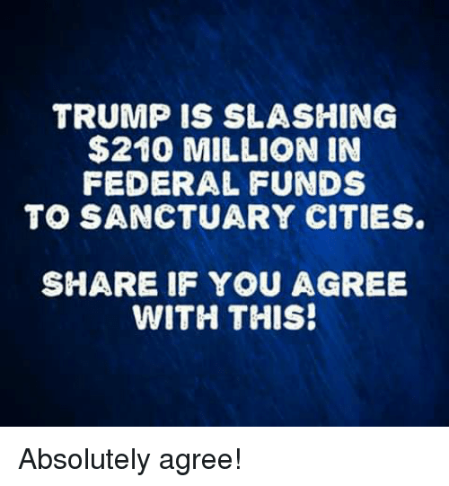 Memes, Trump, and 🤖: TRUMP IS SLASHING  $210 MILLION IN  FEDERAL FUNDS  TO SANCTUARY CITIES  SHARE IF YOU AGREE  WITH THIS! Absolutely agree!