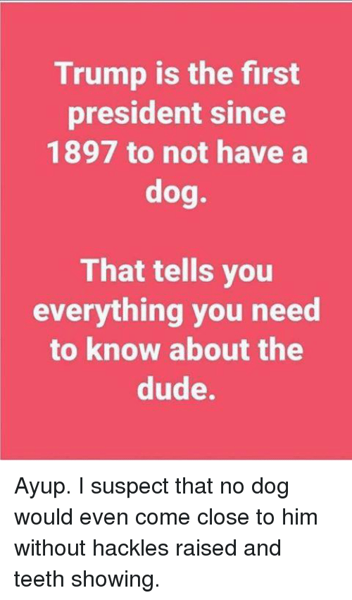 Memes, 🤖, and Dog: Trump is the first  president since  1897 to not have a  dog.  That tells you  everything you need  to know about the  dude. Ayup. I suspect that no dog would even come close to him without hackles raised and teeth showing.