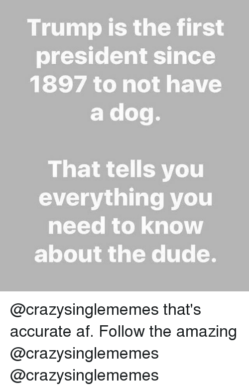 Af, Dude, and Memes: Trump is the first  president since  1897 to not have  a dog.  That tells you  everything you  need to know  about the dude. @crazysinglememes that's accurate af. Follow the amazing @crazysinglememes @crazysinglememes