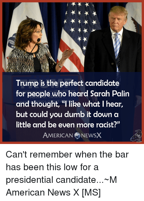 """American News: Trump is the perfect candidate  for people who heard Sarah Palin  and thought, """"l like what I hear,  but could you dumb it down a  little and be even more racist?""""  AMERICAN NEWSX Can't remember when the bar has been this low for a presidential candidate...~M American News X [MS]"""