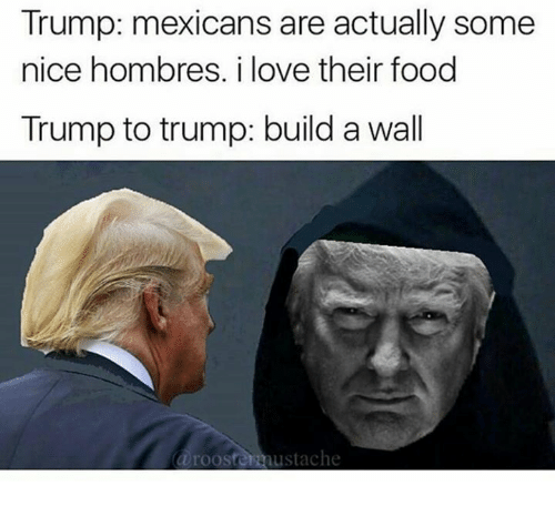 Trump Builds A Wall: Trump: mexicans are actually some  nice hombres. i love their food  Trump to trump: build a wall  a rooster austache