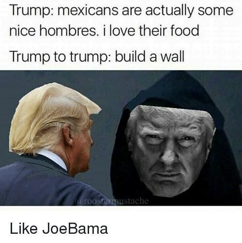 Trump Build A Wall: Trump: mexicans are actually some  nice hombres. i love their food  Trump to trump: build a wall  a roosters austache Like JoeBama