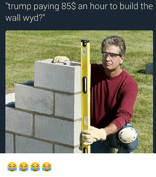 An Hour To Build The Wall Meme