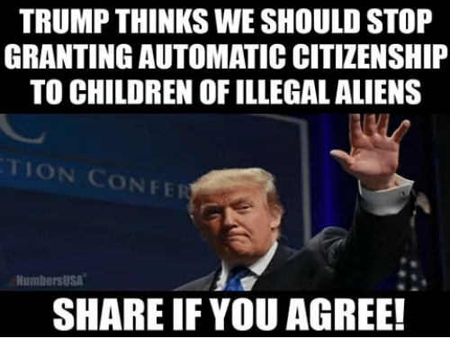 Illegal Aliens: TRUMP THINKS WE SHOULD STOP  GRANTING AUTOMATIC CITIZENSHIP  TO CHILDREN OF ILLEGAL ALIENS  TION CONFE  NumbersUSA  SHARE IF YOU AGREE!