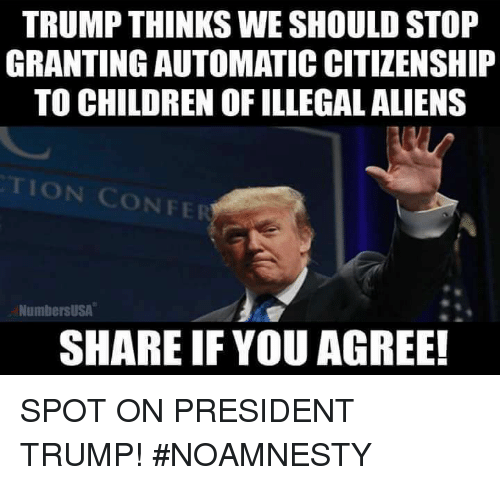 illegible: TRUMP THINKS WE SHOULD STOP  GRANTING AUTOMATICCITIZENSHIP  TO CHILDREN OF ILLEGAL ALIENS  ION CONFER  NumbersUSA  SHARE IF YOU AGREE! SPOT ON PRESIDENT TRUMP! #NOAMNESTY
