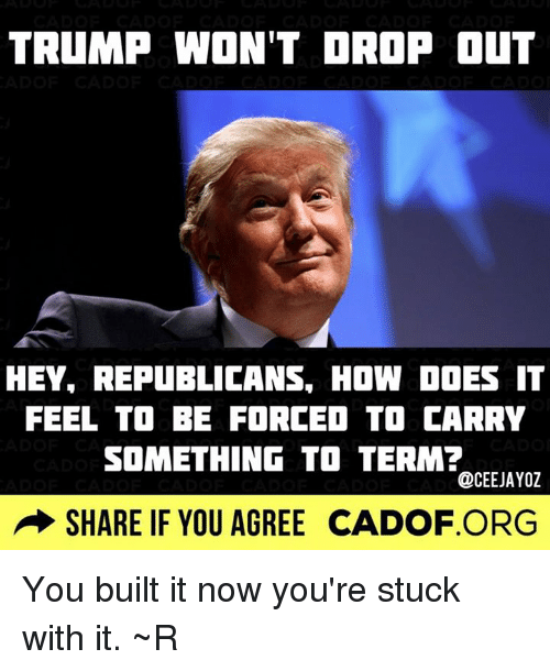 Doe, Memes, and Trump: TRUMP WON'T DROP OUT  HEY, REPUBLICANS, HOW DOES IT  FEEL TO BE FORCED TO CARRY  SOMETHING TO TERM?  @CEEJAYOZ  SHARE IF YOU AGREE CADOF ORG You built it now you're stuck with it. ~R