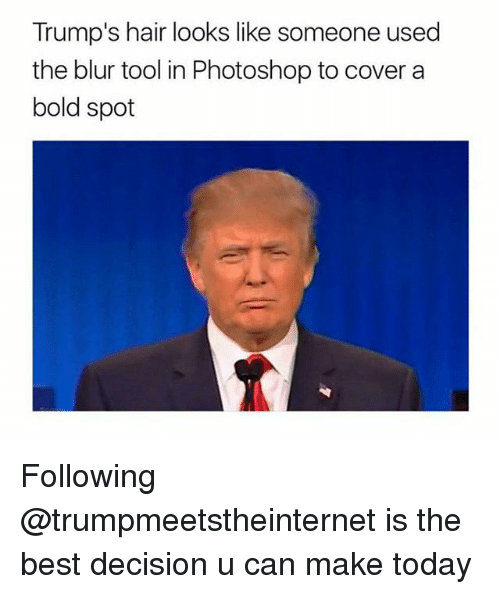Memes, Photoshop, and Best: Trump's hair looks like someone used  the blur tool in Photoshop to cover a  bold spot Following @trumpmeetstheinternet is the best decision u can make today