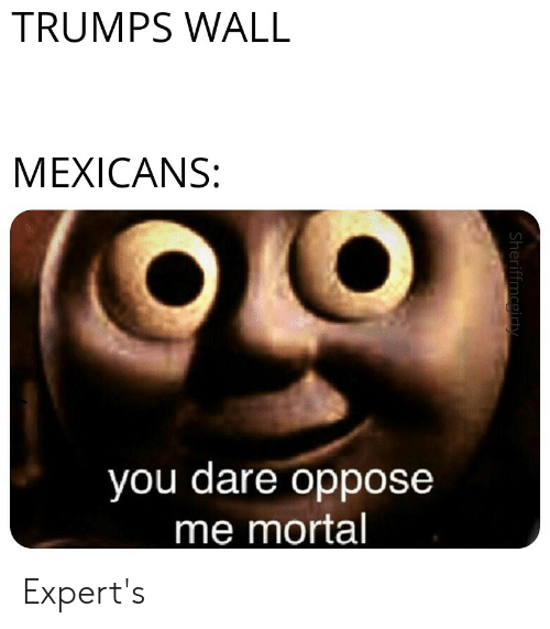 Trumps Wall: TRUMPS WALL  MEXICANS:  you dare oppose  me mortal  Sheriffmcgirty Expert's