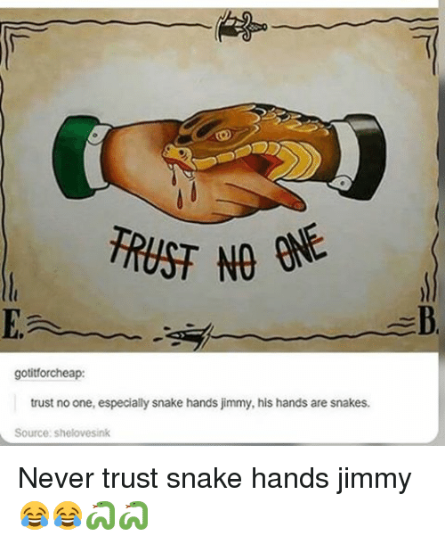 Memes, Snake, and Snakes: TRUST NO  gotitforcheap:  trust noone, especially snake hands jimmy, his hands are snakes.  Source: s Never trust snake hands jimmy😂😂🐍🐍