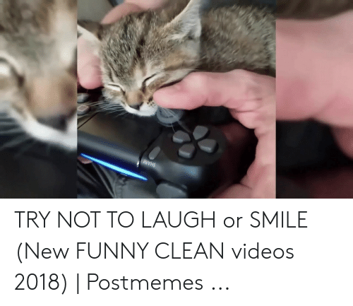 Try Not To Laugh Memes Clean: TRY NOT TO LAUGH or SMILE (New FUNNY CLEAN videos 2018) | Postmemes ...