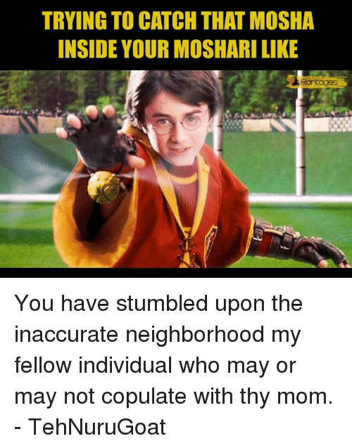 Memes, Individualism, and 🤖: TRYING TO CATCH THAT MOSHA  INSIDE YOUR MOSHARI LIKE  Rantages You have stumbled upon the inaccurate neighborhood my fellow individual who may or may not copulate with thy mom.   - TehNuruGoat