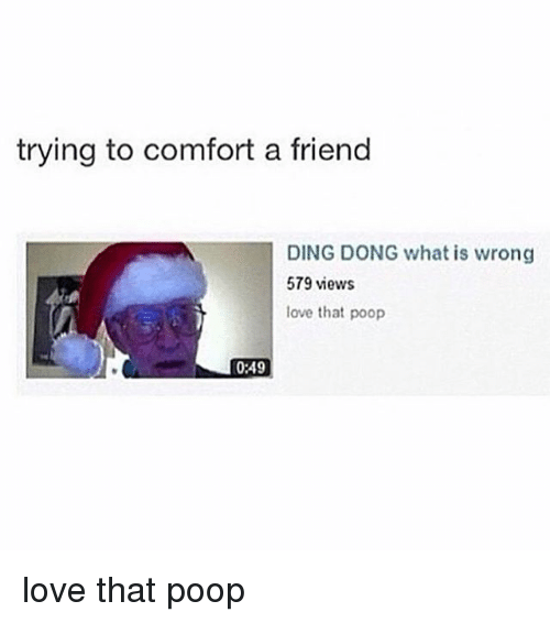 Girl Memes: trying to comfort a friend  DING DONG what is wrong  579 views  love that poop  0:49 love that poop