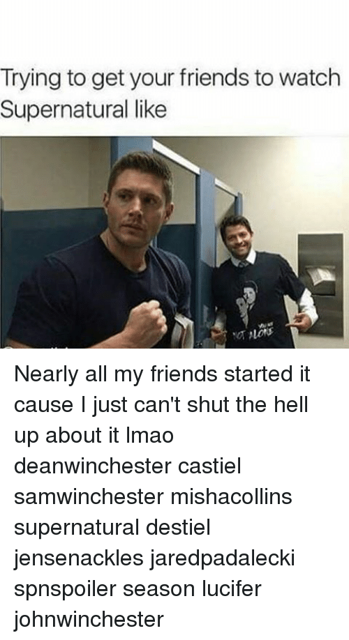 watch supernatural: Trying to get your friends to watch  Supernatural like Nearly all my friends started it cause I just can't shut the hell up about it lmao deanwinchester castiel samwinchester mishacollins supernatural destiel jensenackles jaredpadalecki spnspoiler season lucifer johnwinchester
