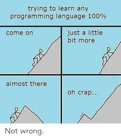 just a little bit: trying to learn any  programming language 100%  just a little  bit more  come on  almost there  oh crap... Not wrong.