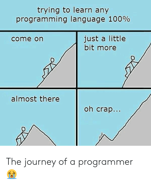 just a little bit: trying to learn any  programming language 100%  just a little  bit more  come on  almost there  oh crap... The journey of a programmer 😭