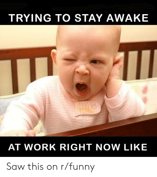 trying to stay awake at work: TRYING TO STAY AWAKE  AT WORK RIGHT NOW LIKE Saw this on r/funny