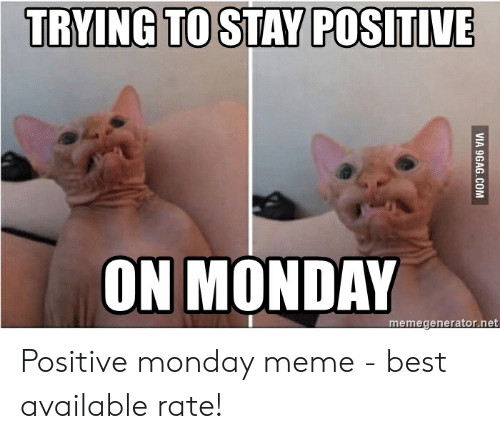 Positive Monday: TRYING TO STAY POSITIVE  ON MONDAY Positive monday meme - best available rate!