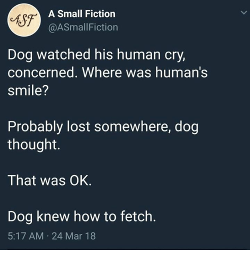 Lost, How To, and Smile: tsf-  A Small Fiction  @ASmallFiction  Dog watched his human cry,  concerned. Where was human's  smile?  Probably lost somewhere, dog  thought.  That was OK.  Dog knew how to fetch.  5:17 AM 24 Mar 18