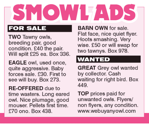 Memes, 🤖, and Greys: TSMOWL ADS  BARN OWN for sale  FOR SALE  Flat face, nice quiet flyer.  Two Tawny owls,  Hoots smashing. Very  breeding pair, good  wise. £50 or will swap for  condition. £40 the pair.  two tawnys. Box 978.  Will split 25 ea. Box 336  WANTED  EAGLE owl, used once  quite aggressive. Baby  GREAT Grey owl wanted  forces sale. €30. First to  by collector. Cash  waiting for right bird. Box  see will buy. Box 273  449  RE-OFFERED due to  time wasters. Long eared  TOP prices paid for  owl. Nice plumage, good  unwanted owls. Flyers/  mouser. Pellets first time  non flyers, any condition  www.webuyanyowl.com  €70 ono. Box 438.