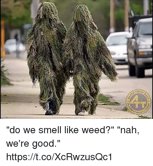 "Smell, Weed, and Good: TT  'qTWEt  XM00 ""do we smell like weed?"" ""nah, we're good."" https://t.co/XcRwzusQc1"