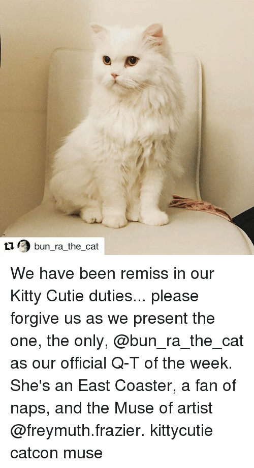 the muses: tu bun ra the cat We have been remiss in our Kitty Cutie duties... please forgive us as we present the one, the only, @bun_ra_the_cat as our official Q-T of the week. She's an East Coaster, a fan of naps, and the Muse of artist @freymuth.frazier. kittycutie catcon muse