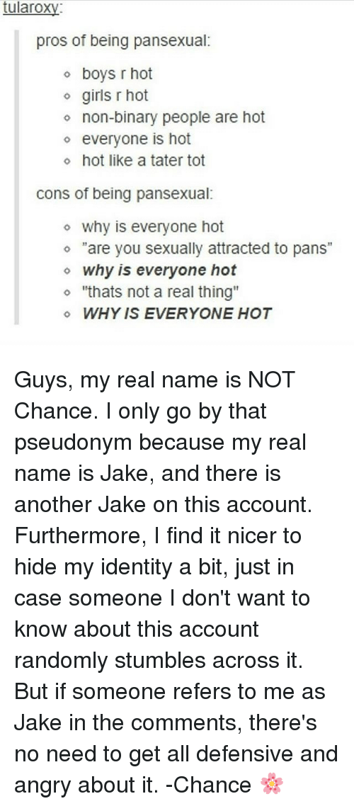 """like: tularoxy  pros of being pansexual:  o boys r hot  o girls r hot  o non-binary people are hot  o everyone is hot  o hot like a tater tot  cons of being pansexual:  o why is everyone hot  """"are you sexually attracted to pans  o why is everyone hot  o """"thats not a real thing""""  WHY IS EVERYONE HOT Guys, my real name is NOT Chance. I only go by that pseudonym because my real name is Jake, and there is another Jake on this account. Furthermore, I find it nicer to hide my identity a bit, just in case someone I don't want to know about this account randomly stumbles across it. But if someone refers to me as Jake in the comments, there's no need to get all defensive and angry about it. -Chance 🌸"""
