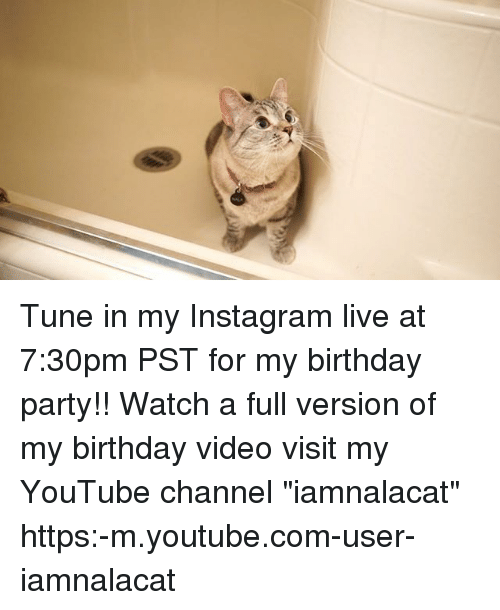 """Youtubee Com: Tune in my Instagram live at 7:30pm PST for my birthday party!! Watch a full version of my birthday video visit my YouTube channel """"iamnalacat"""" https:-m.youtube.com-user-iamnalacat"""