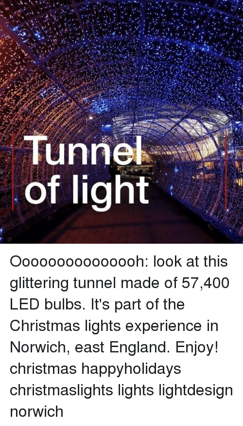 Christmas, England, and Memes: Tunne  of light Ooooooooooooooh: look at this glittering tunnel made of 57,400 LED bulbs. It's part of the Christmas lights experience in Norwich, east England. Enjoy! christmas happyholidays christmaslights lights lightdesign norwich