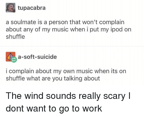 Memes, Music, and Work: tupacabra  a soulmate is a person that won't complain  about any of my music when i put my ipod on  shuffle  a-soft-suicide  i complain about my own music when its on  shuffle what are you talking about The wind sounds really scary I dont want to go to work