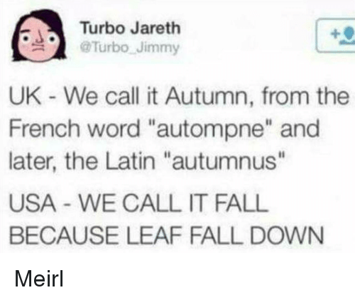 """fall down: Turbo Jareth  @Turbo-Jimmy  .  UK - We call it Autumn, from the  French word """"autompne"""" and  later, the Latin """"autumnus""""  USA - WE CALL IT FALL  BECAUSE LEAF FALL DOWN Meirl"""