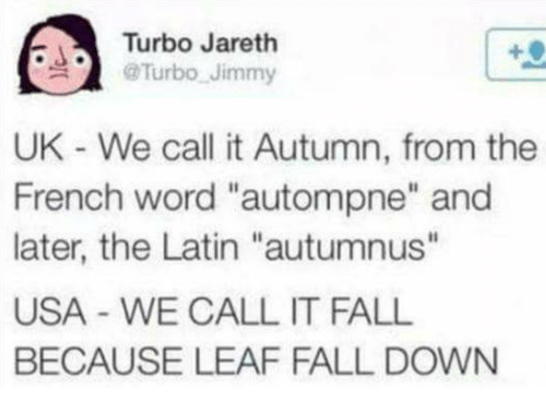 """fall down: Turbo Jareth  @Turbo Jimmy  UK - We call it Autumn, from the  French word """"autompne"""" and  later, the Latin """"autumnus""""  USA WE CALL IT FALL  BECAUSE LEAF FALL DOWN"""